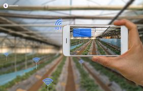iot in smart agriculture